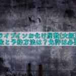 ドライブインお化け屋敷 大阪 料金