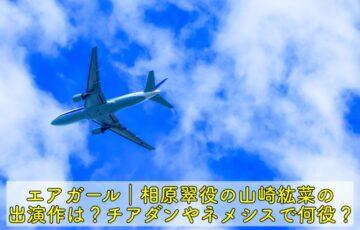 エアガール 相原翠 山崎紘菜