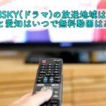 RISKY ドラマ 放送地域