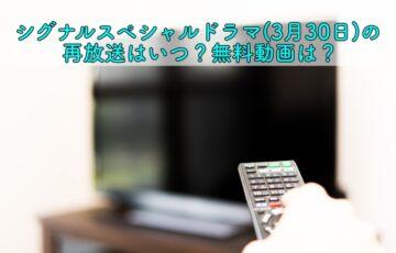 シグナルスペシャル 再放送
