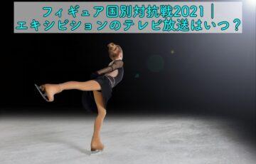 フィギュア国別対抗戦2021 エキシビ テレビ放送