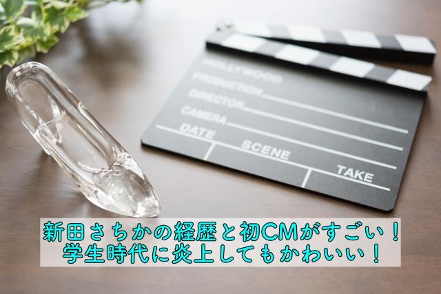 新田さちか 経歴